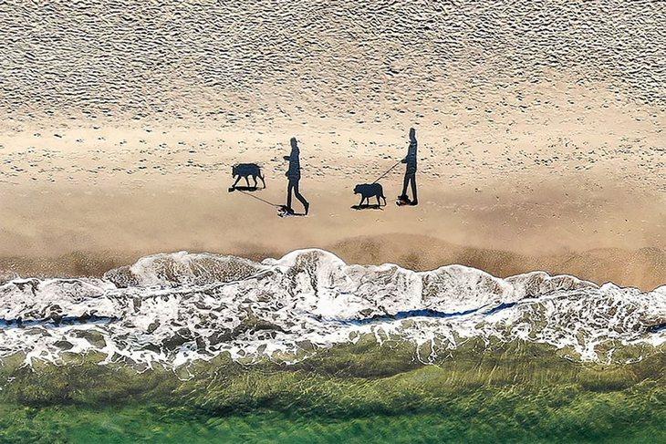 """תמונות יפות ומדהימות מרחפן: """"2 כלבים, 2 אנשים ו-4 צללים"""" צולם על ידי Qliebin"""