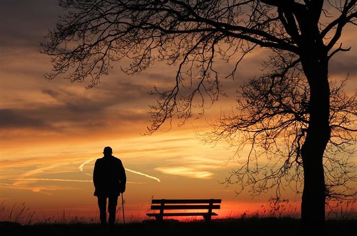 סיבות לדכדוך לא מוסבר: צללית של איש עם מקל בשעת שקיעה ליד ספסל ועץ