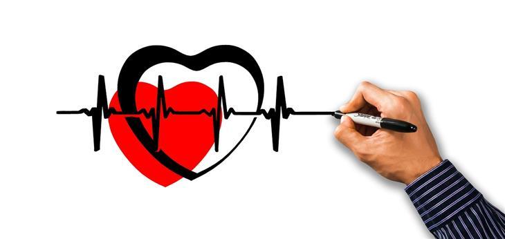 יתרונות בריאותיים של צמח הקדד: אדם מצייר לב עם קו א.ק.ג