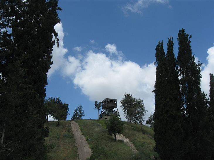 אתרי טבע ומסלולים בעמק יזרעאל והסביבה: מגדל השמירה הישן מצולם מתחתית תל שמרון