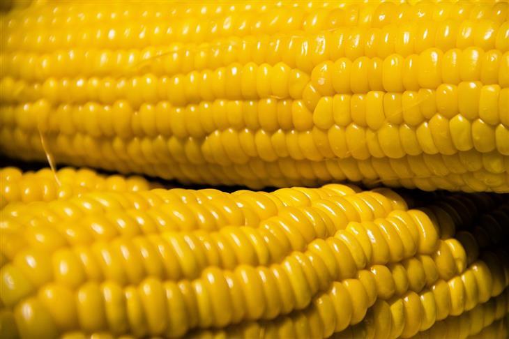 טיפים ומאכלים לשמירה על טחול בריא: קלחי תירס