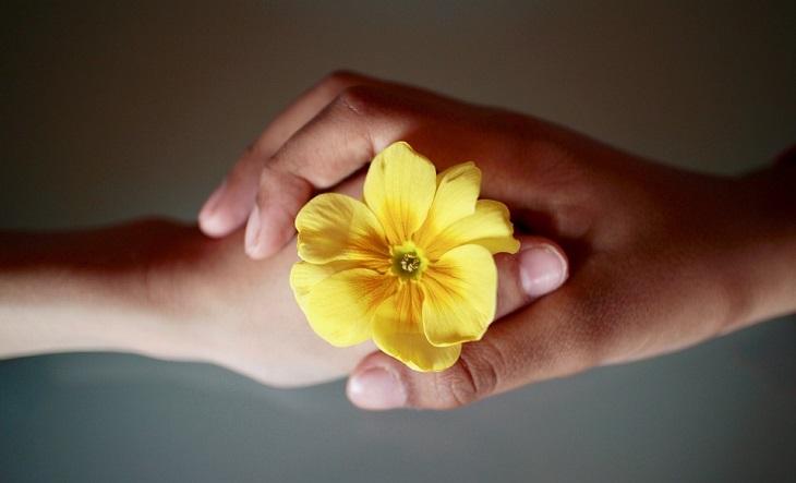 שאלות שכל זוג צריך לשאול: שתי ידיים אוחזות פרח צהוב