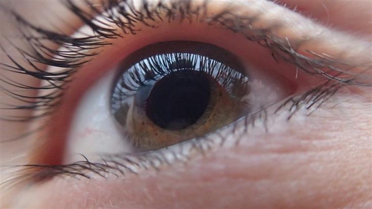 יתרונות בריאותיים של קנאביס: עין