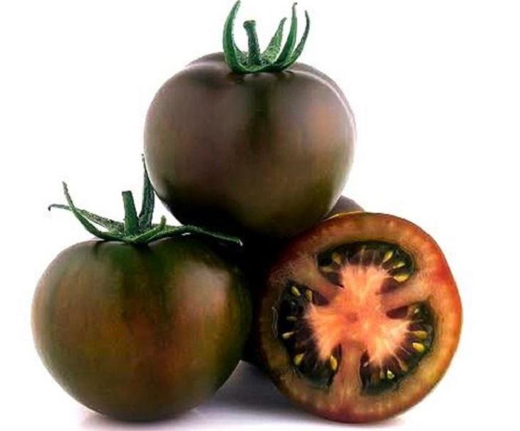 מדריך העגבניות: עגבניית קומאטו