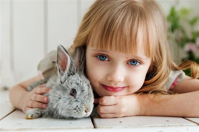בחן את עצמך: ילדה עם ארנב