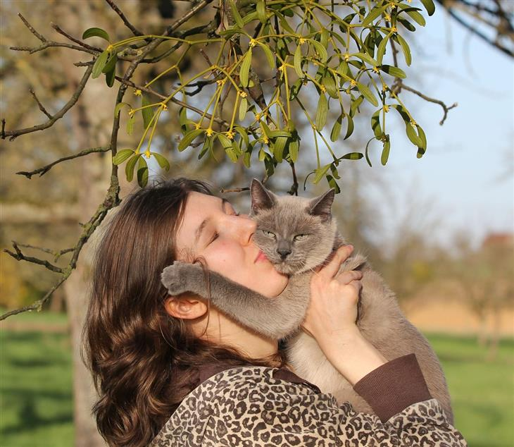 מחקר על חתולים והיחס שלהם לבעליהם: אישה מחזיקה ומנשקת חתול