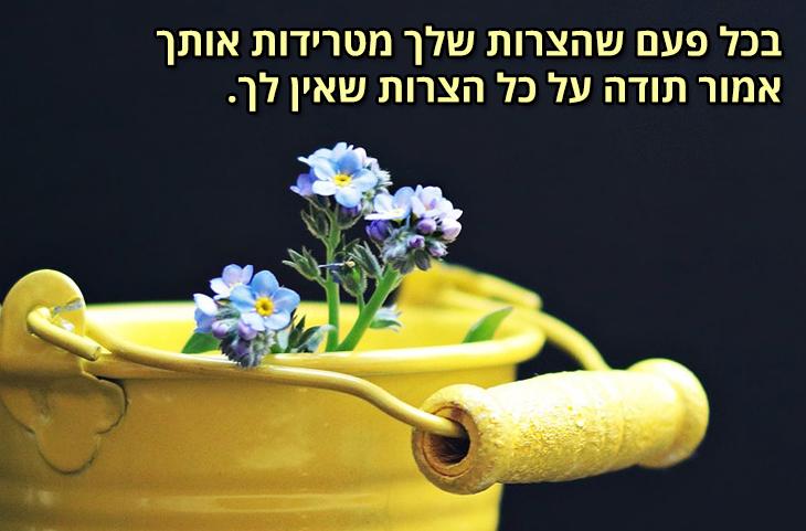 משפטים שיתנו לכם כוחות: בכל פעם שהצרות שלך מטרידות אותך אמור תודה על כל הצרות שאין לך.