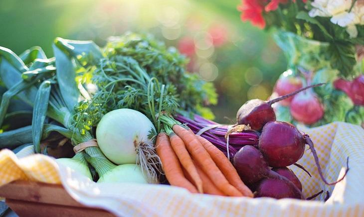 """רפואת הרמב""""ם: ירקות בסל"""