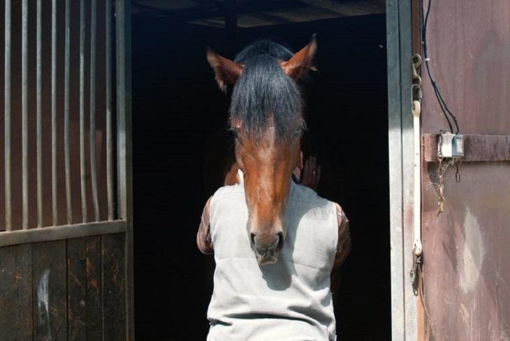 תמונות שצולמו ברגע הנכון: בחור שנראה כאילו יש לו ראש של סוס