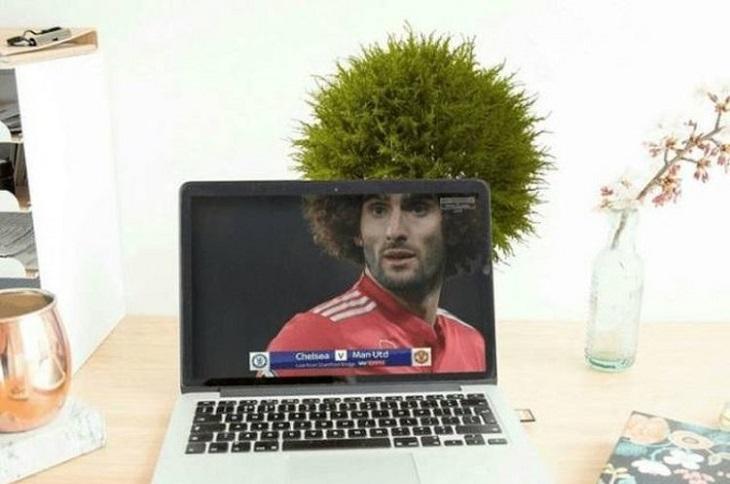 תמונות שצולמו ברגע הנכון: מסך של מחשב נייד המראה שחקן כדורגל עם אפרו, ומאחורי המסך יש עציץ שנראה כאילו הוא משלים את התסרוקת