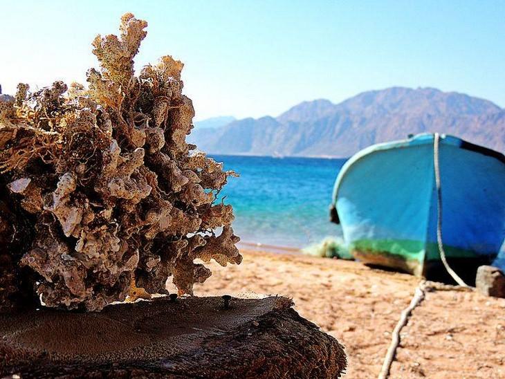 תמונות מסיני: אלמוג לצד סירה