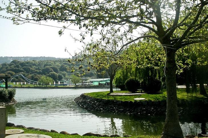 אירועים בסוכות: אגם מונפורט