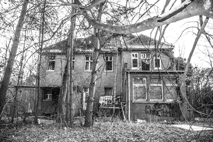 משל הבנאי: בית ביער