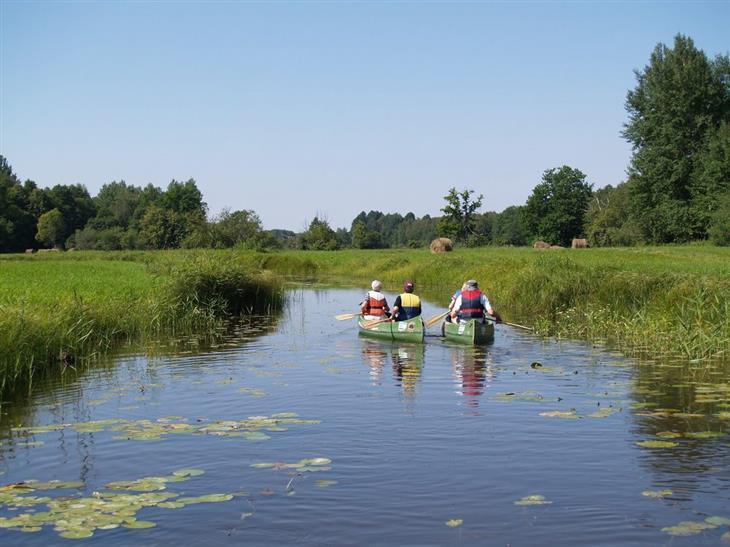 אטרקציות באסטוניה: אנשים שטים בקאנו בפארק סומה