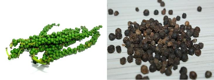 תבלינים בצורתם הטבעית: תמונה של פלפל שחור בצורתו הטבעית וכתבלין