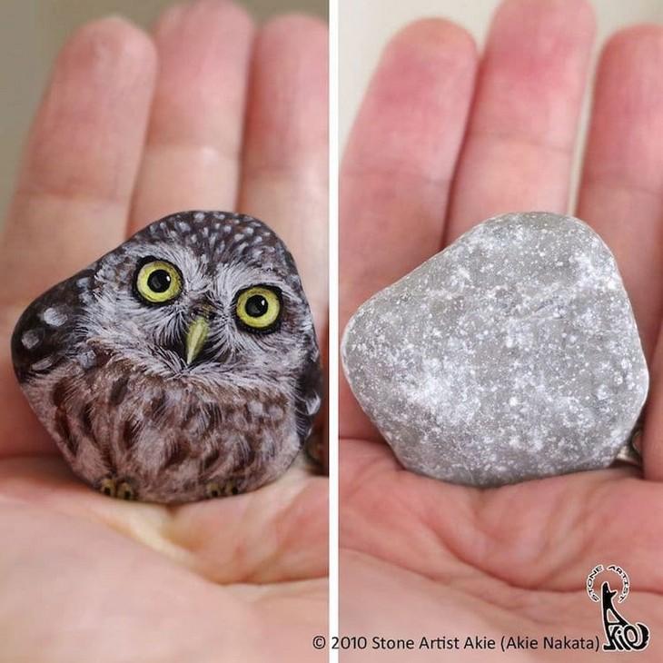 ציורי חיות על אבנים: ציור של ינשוף על אבן