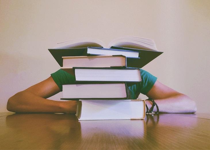 מדריך לבחירת תחום הוראה: ערימת ספרים ומאחוריה מסתתר ילד