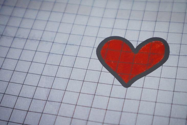 יתרונות וחסרונות באכילת גרעיני חמנייה: לב אדום מצויר על דף משובץ