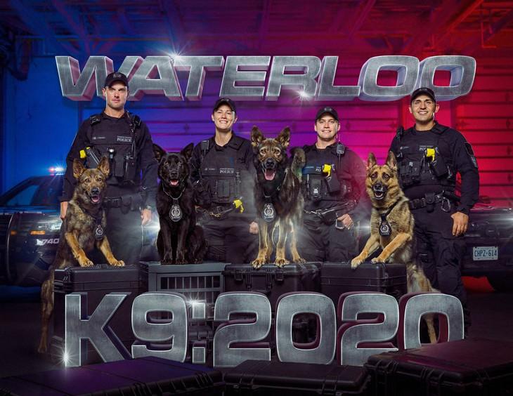 תמונות של כלבי משטרה: 4 כלבים וט-4 שוטרים עומדים זה לצד זה
