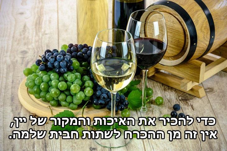 ציטוטים של אוסקר ויילד: כדי להכיר את האיכות והמקור של יין, אין זה מן ההכרח לשתות חבית שלמה.