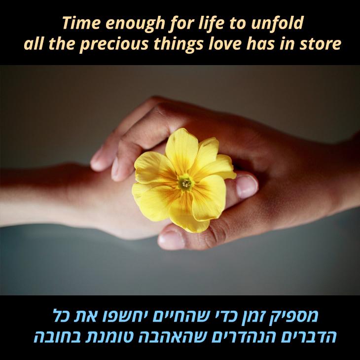 תרגום לשיר We have all the time in the world: מספיק זמן כדי שהחיים יחשפו את כל הדברים הנהדרים שהאהבה טומנת בחובה
