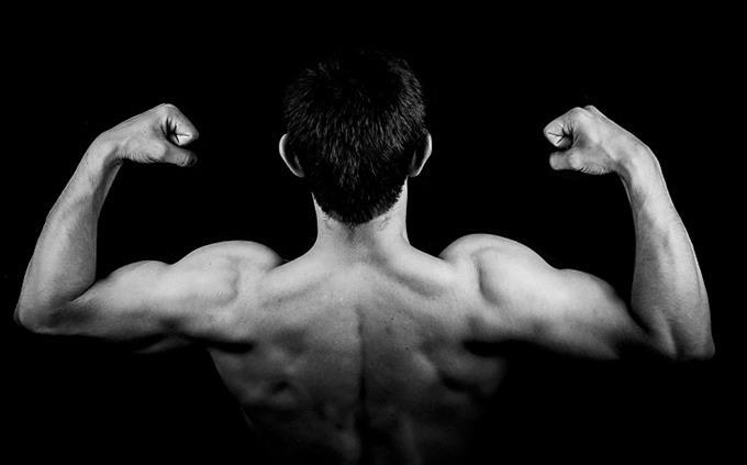 מבחן ידע כללי: אדם מנפח את שריריו