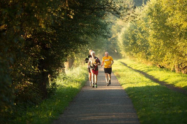 מחקר על החשיבות של כושר גופני אחרי גיל 60: אנשים מבוגרים רצים בטבע