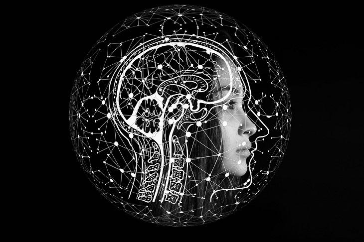 תאי עצב מלאכותיים: בחורה ועליה השתקפות של מוח ותאי עצב