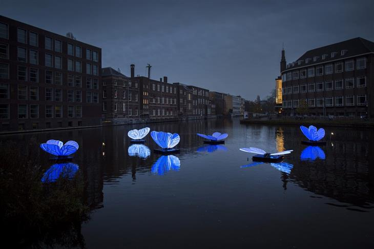 מיצגים מפסטיבל האור באמסטרדם 2019