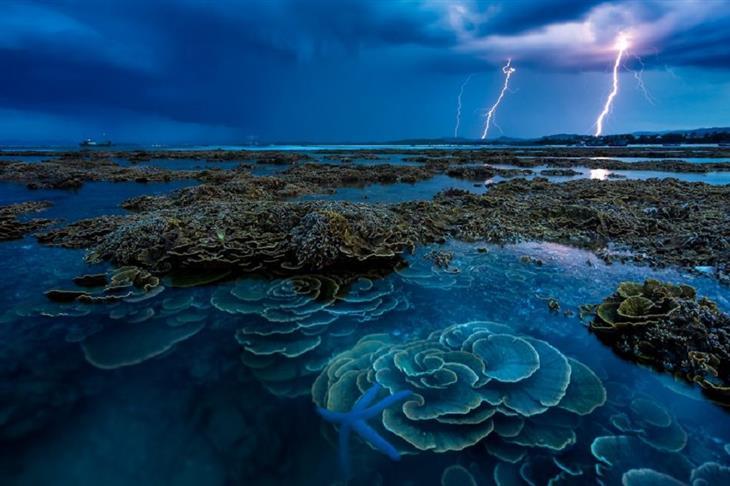 תמונות מתחרות צילום נוף 2019: ברקים על ים באי הון ין שבווייטנאם