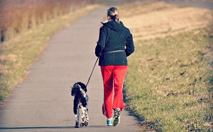 סימנים מפתיעים למשבר אמצע החיים: אישה רצה עם כלב