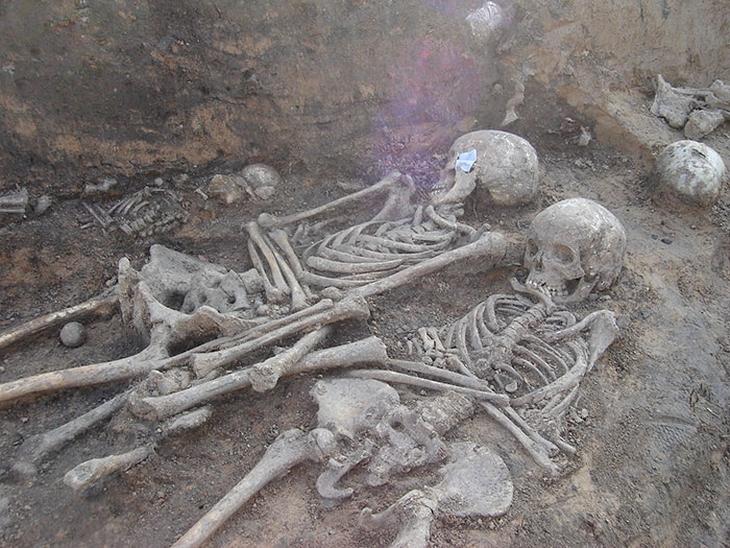 תגליות ארכיאולוגיות: שלדים