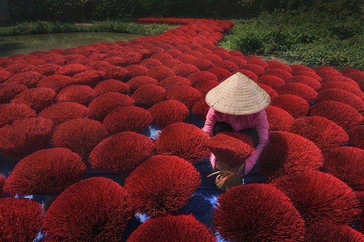 תמונות מדהימות מתחרות הצילום הבינלאומית של סיינה: שביל שלם של קטורת אדומה