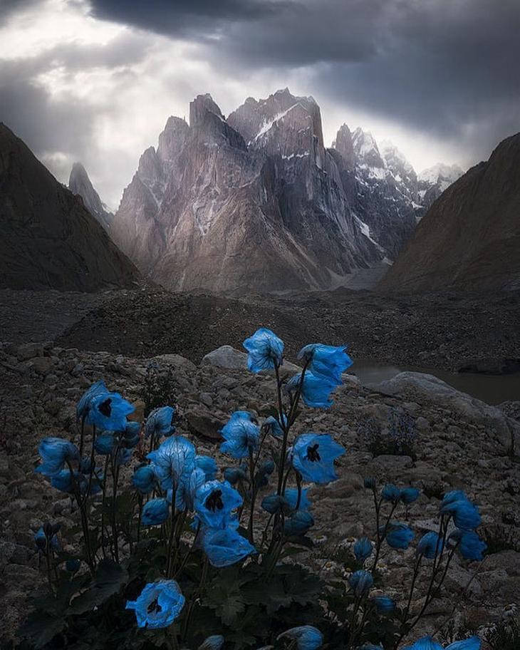 נופים בלתי נשכחים: הפארק הלאומי טורס דל פיינה, צ'ילה