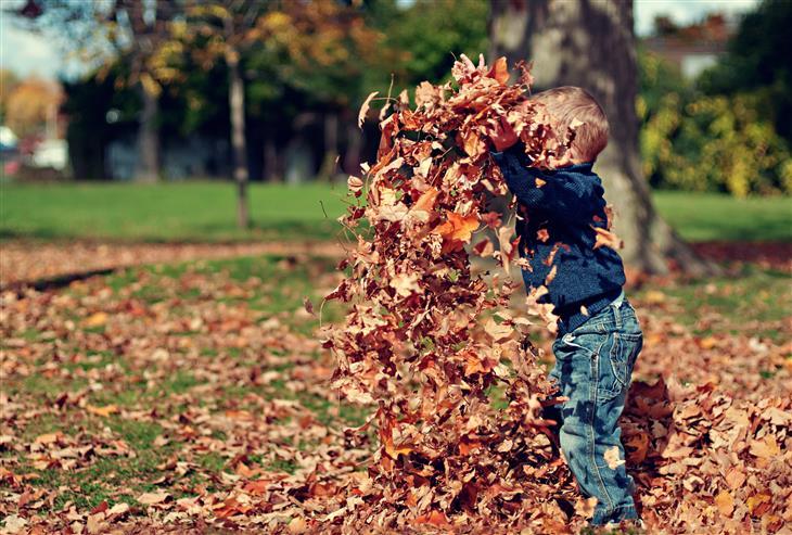 עצות מפסיכולוגית לגידול ילדים: ילד משחק עם ערימת עלים