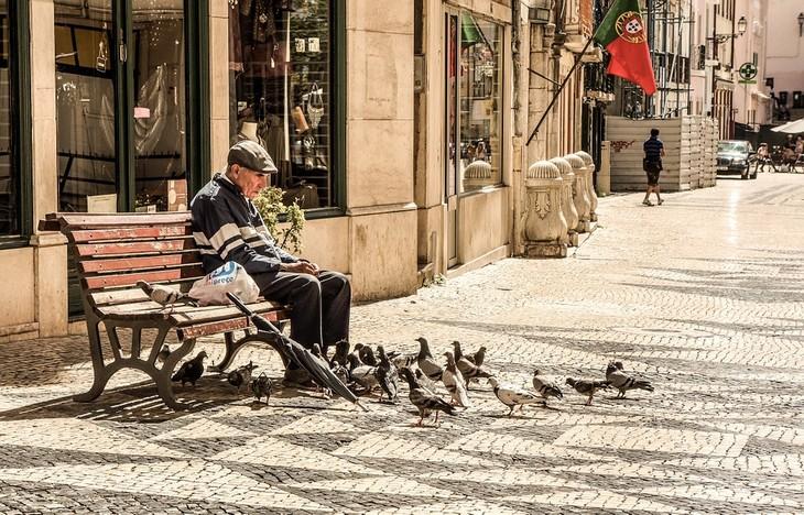 סימנים מעידים לאלצהיימר: גבר מבוגר יושב על ספסל ולידו קבוצת יונים