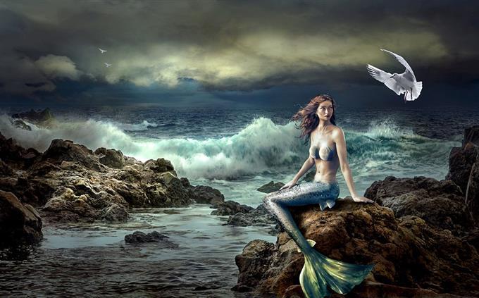 מבחן טריוויה: בת ים
