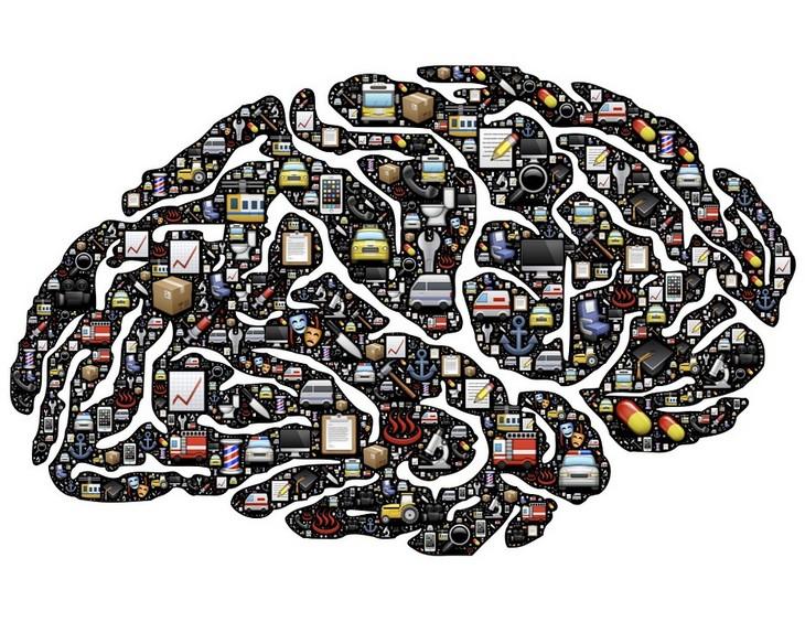 מחקר פטריות ותפקוד מוחי: ציור של מוח עם הרבה פרטי יום יום בתוכו