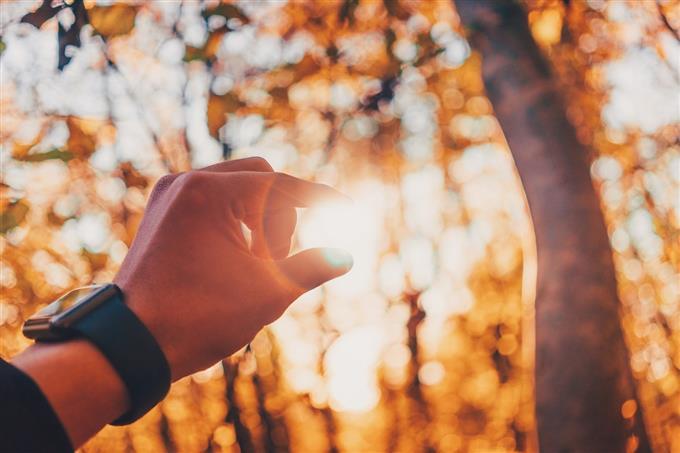 מבחן אישיות חיית עוצמה: אצבעות נלחצות כנגד השמש