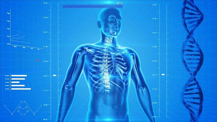 """רפואה פונקציונאלית: תצלום של גוף אדם ודנ""""א"""