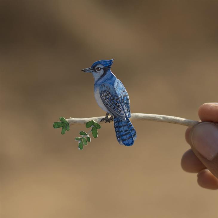 ציפורים מחיתוכי נייר: עורבני כחול