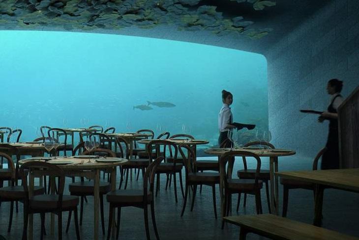 מסעדה תת-ימית: מסעדה ומלצריות