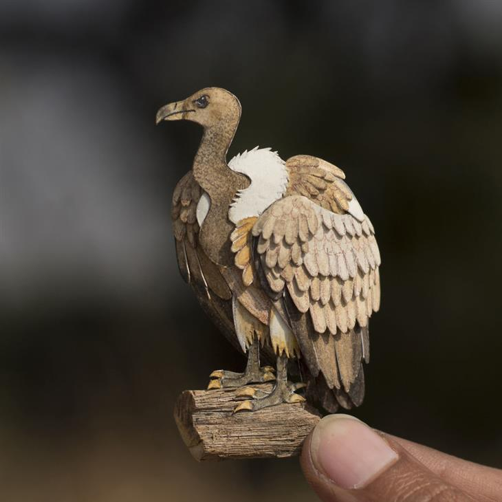ציפורים מחיתוכי נייר: נשר מקראי