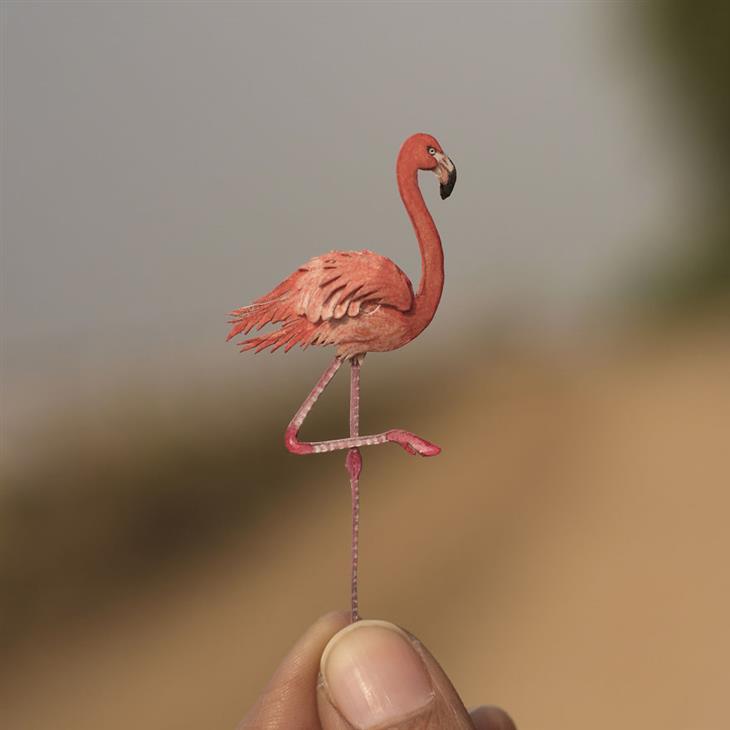 ציפורים מחיתוכי נייר: פלמינגו מצוי