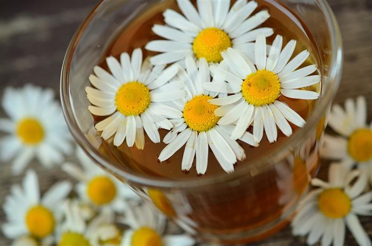 יתרונות בריאותיים של קמומיל: כוס תה עם פרחי קמומיל עליה