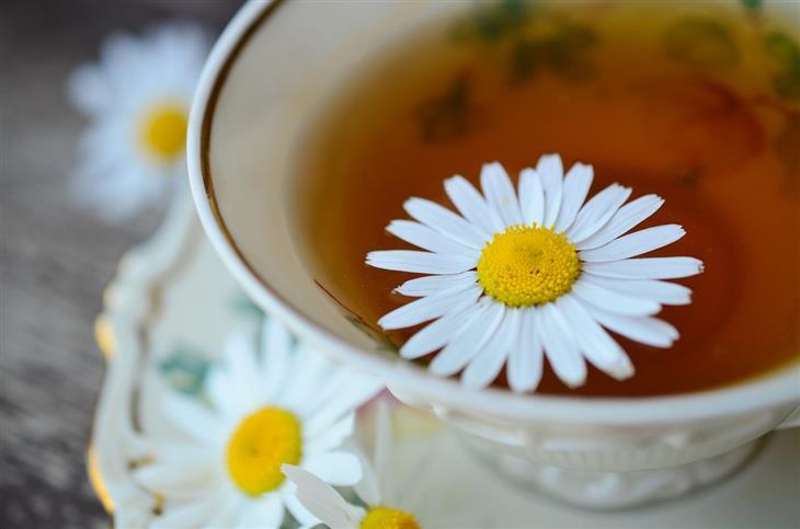 יתרונות בריאותיים של קמומיל: כוס תה עם פרח קמומיל עליו