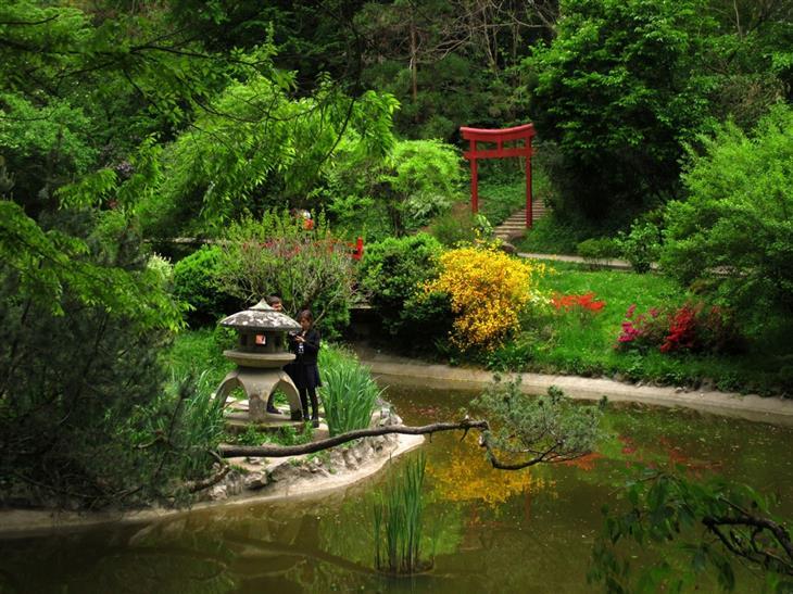 אתרים ואטרקציות בקלוז-נאפוקה: גן יפני בגן הבוטני