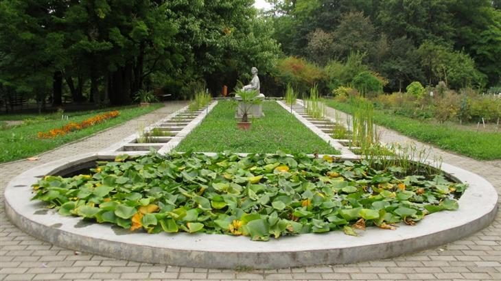 אתרים ואטרקציות בקלוז-נאפוקה: פסל בגן הבוטני