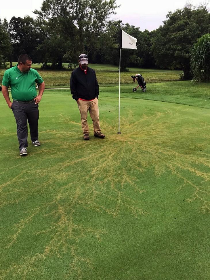 מראות טבעיים מיוחדים: שני אנשים עומדים ליד גומת גולף ועל הדשא יש דוגמה של ברק