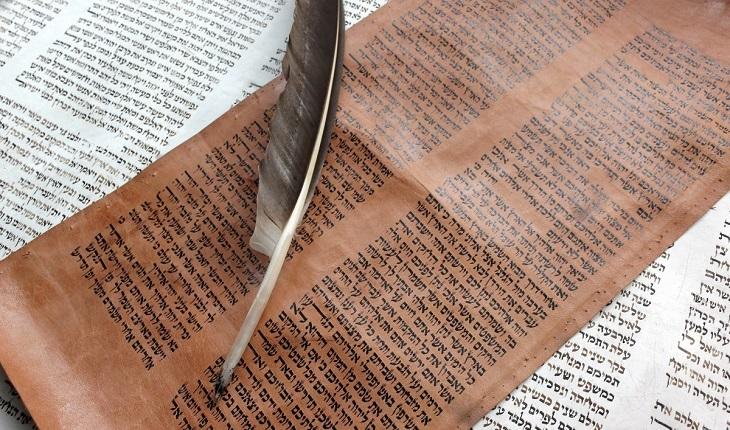 בדיחה על שיעור תורה: מגילות תורה ונוצה